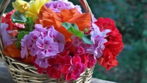 items NY movers won't move - a basket with flowers