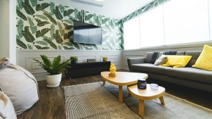 pack your plants for moving so that your new living room will look bright and fresh