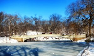 a visit to central park is great when moving to NYC during the holidays. Central Park river and bridge
