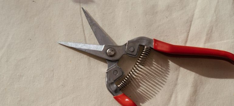 Pro tips on how to prepare gardening tools for moving.