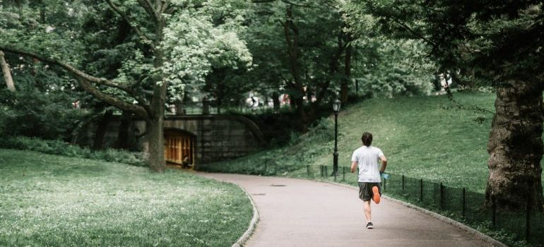 Central Park is one of the best places in NYC for nature lovers. best