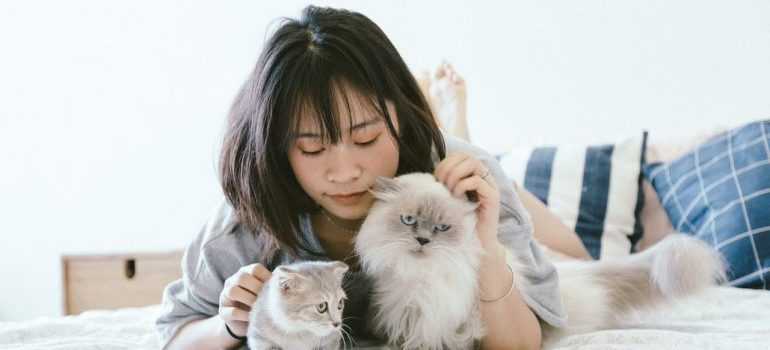 A woman laying in a bed with cats.
